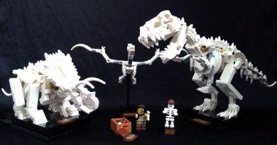 Lego Ideas 21320
