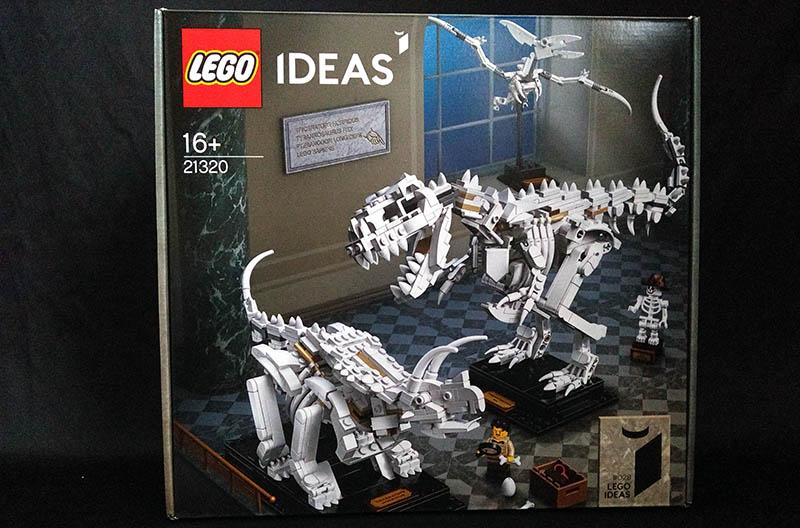 Boite LEGO IDEAS 21320