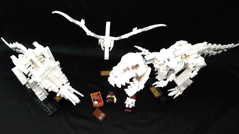 LEGO IDEAS 21320 - vue d'ensemble